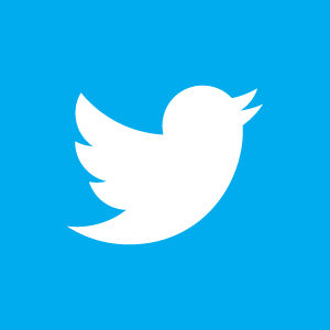 /data/shopcart7/image_db/twitter-bird-white-on-blue.jpg